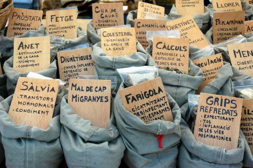 Hierbas medicinales: el secreto para curar las dolencias