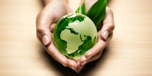 Vivir verde, pensar verde