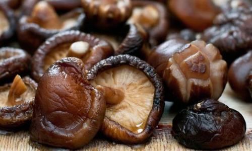 Conoce algunas de las propiedades del hongo shiitake