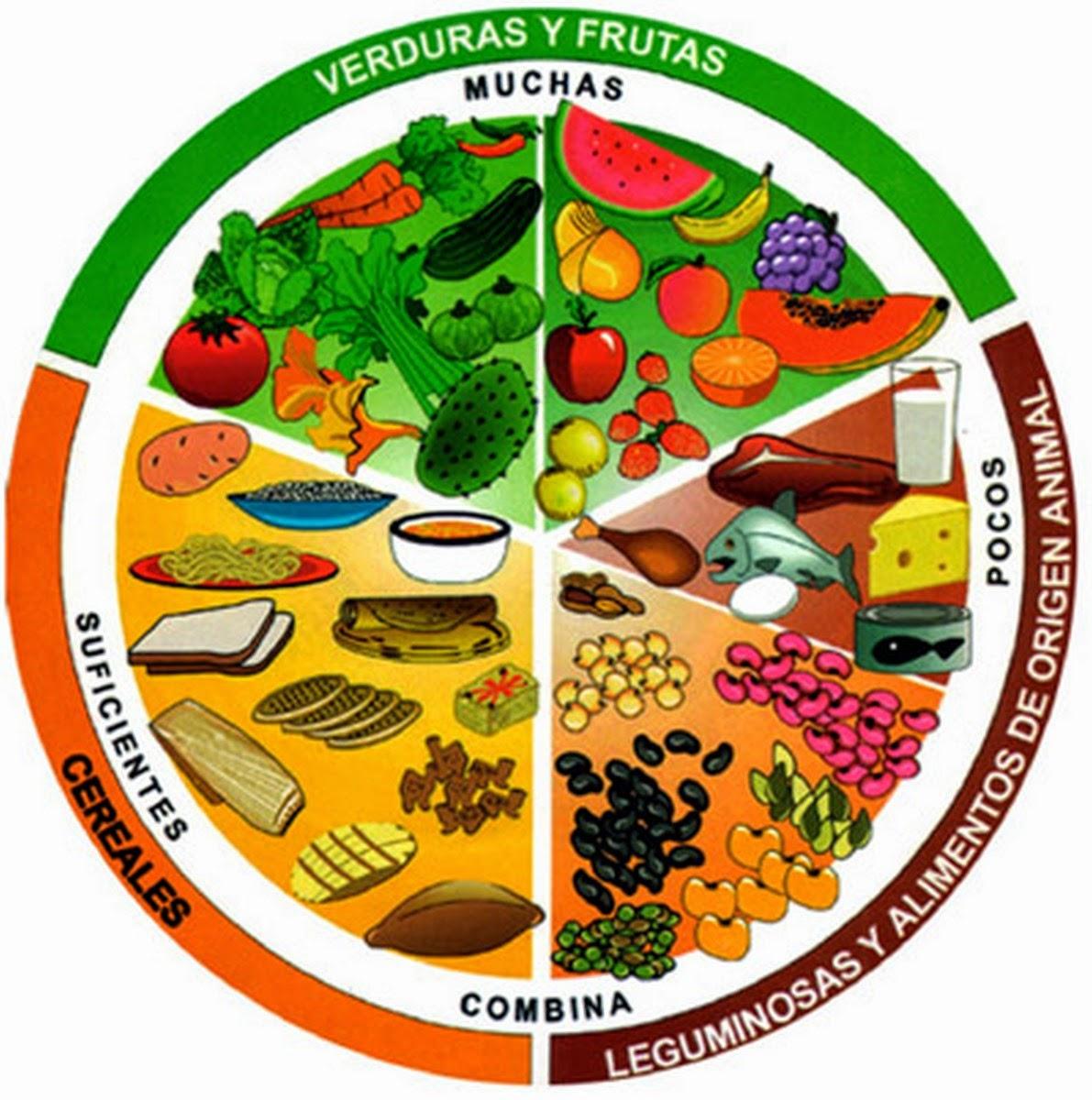 dieta equilibrada con aceite de oliva