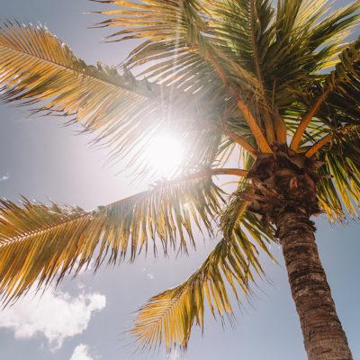 Todo sobre la vitamina D y sus beneficios para la salud