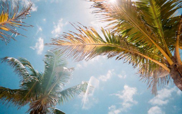 Protección solar por la nutricionista Neus Elcacho